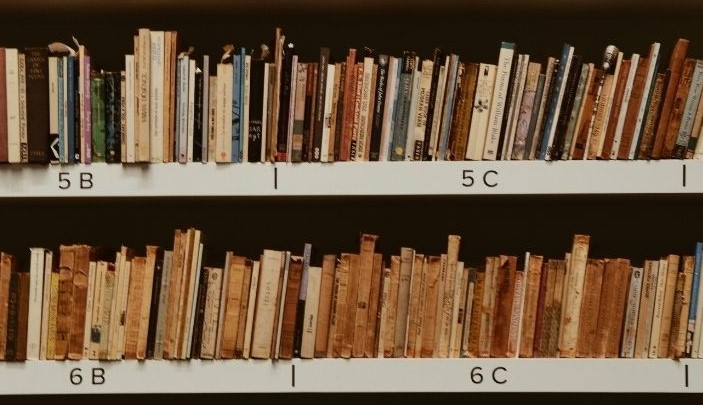 Bücher in Regal
